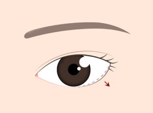 たれ目のイラスト