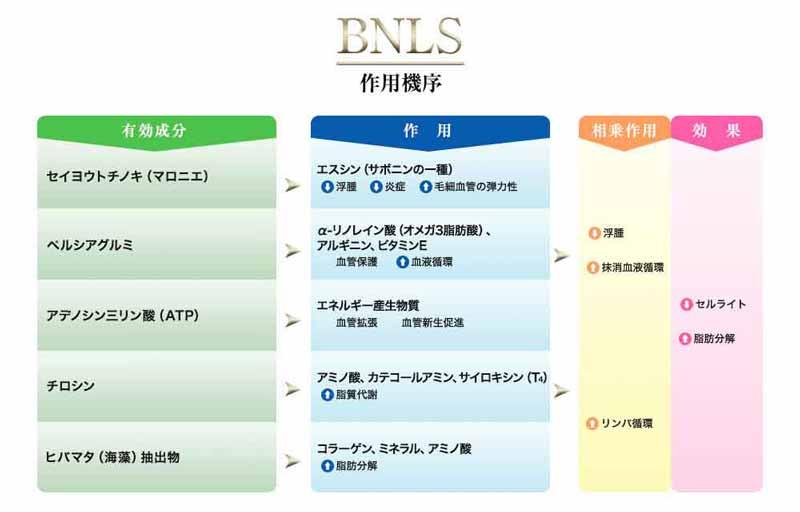 BNLS作用順序