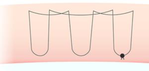 もとびアイプラチナムの糸の通し方