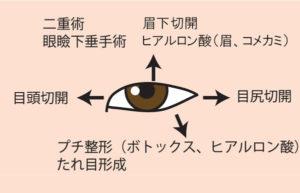 目の方向別、目を大きくする施術。