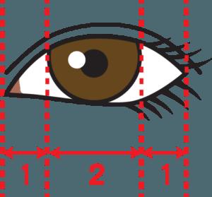 黒目と白目の理想のバランス