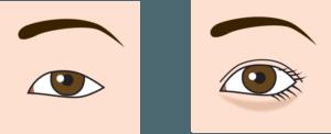 目の上のライン'による効果