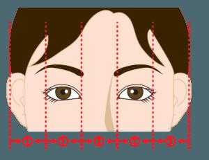 目と目の間の幅の理想のバランス