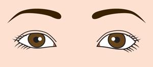 目の下のラインの左右差
