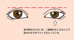 目の開きの左右差でバランスをとっている図