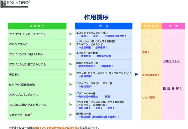 BNLS-neo-成分-作用