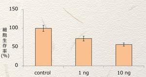 BNLS-neo-細胞生存率