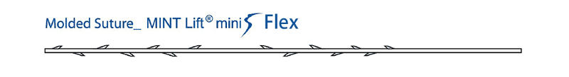 MINTLIFTminiSFlex(ミントリフトミニフレックス)の図
