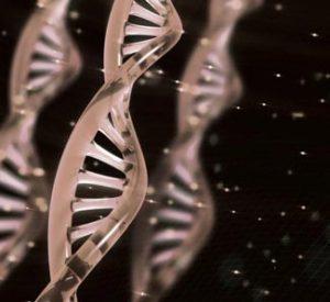 DNAイメージ図