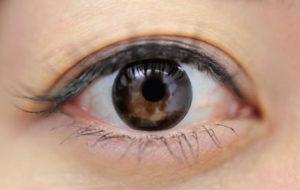 大きな黒目。でファイン