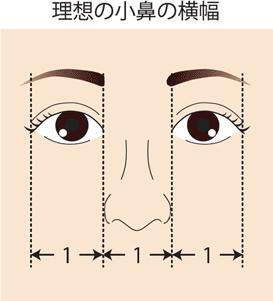 理想の小鼻幅 鼻整形
