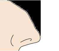 わし鼻側面
