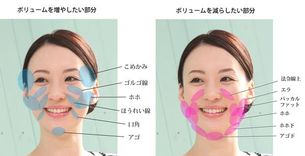 お顔の脂肪を減らすべき部分、減らしてはいけない部分