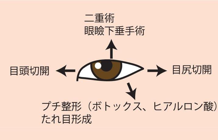 目を大きくする方向