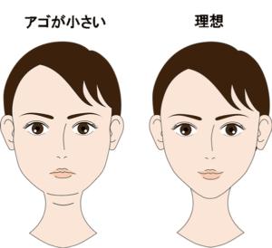 理想の顎のイメージ