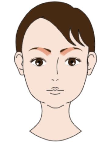 皺眉筋の位置