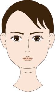 顎が丸い人のイメージ